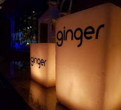 Ginger en Sevilla Este