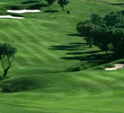 Almenara Club de Golf en Sotogrande