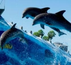 Aqualand Costa Adeje en Adeje