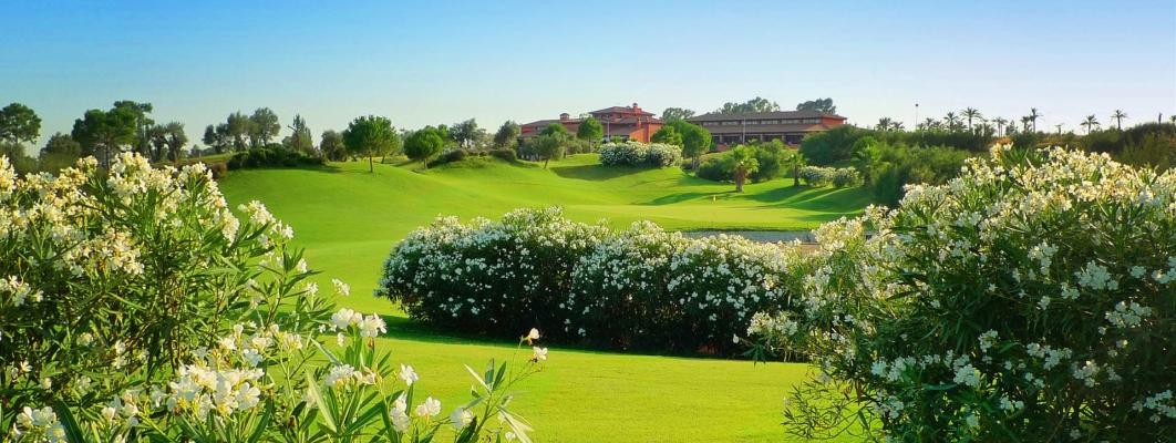 Hato Verde Golf