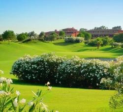 Hato Verde Golf en Las Pajanosas